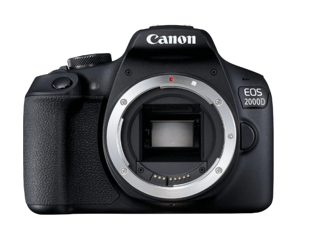 Are you a newbie to the world of photography and DSLRs? We are going to help with the most important choice - getting the first DSLR. Save money by buying Canon EOS 2000D and learn to send large files with FileWhopper.