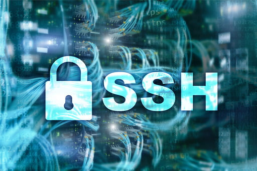 Need to transfer files online but don't know how to do this securely? Check out some secrets to secure file transfer like using SSH, Secure Shell protocol.