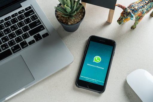 We are spilling the secrets on how to send large video files using WhatsApp. In this article you will find out how big a file you can send with WhatsApp and alternatives for sending large files easily and quickly.