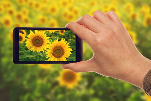 This article lists the best photo editing apps for Android. Photo apps are really handy and can save you ample time.
